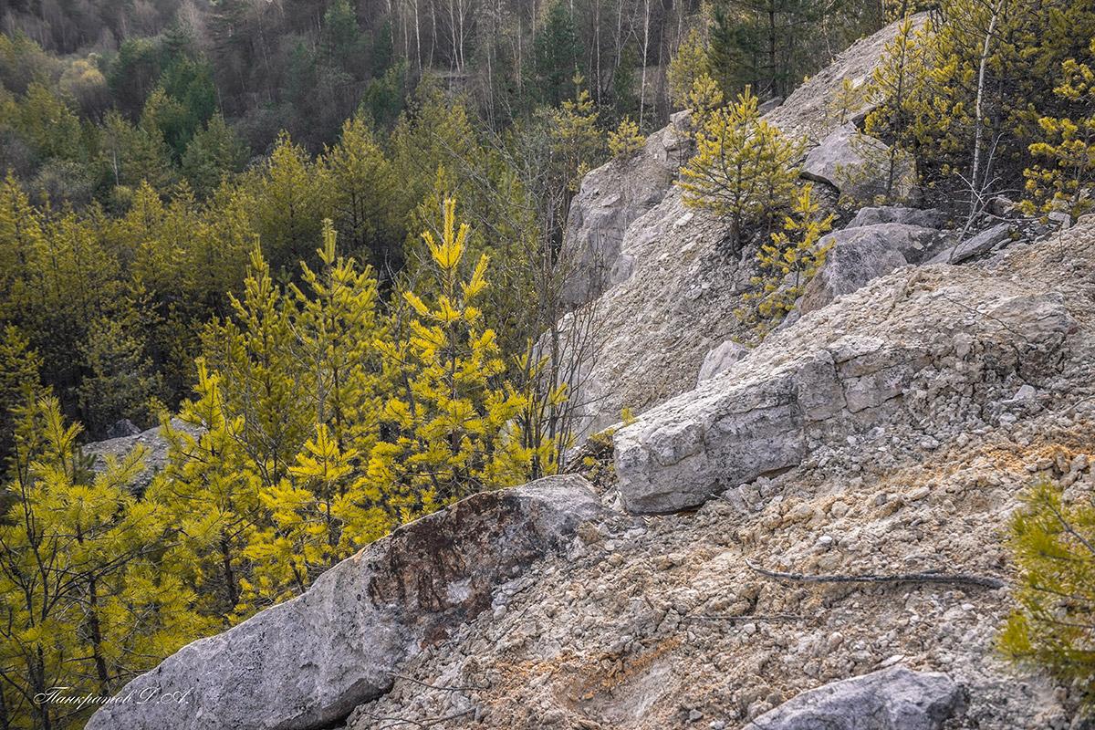 progulka-po-kar-eru-16