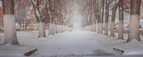 ноябрьский-снег-3